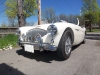 1954-Austin-Healey-100-4-001