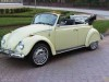 Volkswagen Beetle convertible (all years)